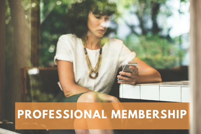 Sales & Marketing Executives of Cleveland Professional Membership